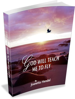 God Will Teach Me to Fly by Joanetta Hendel